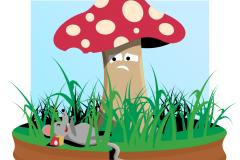Mushrom